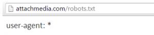 Auditoría SEO Robots txt